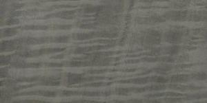 Eukaliptus rigiel grau