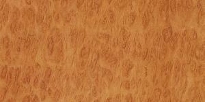 Eukaliptus płomienny